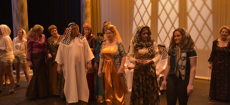 AlloJannao - Haaksbergen - Revue - Hoksebarge - Allô Jannaô - Tone - Gaitjan - Truike - Graads - Leida - Toneel - Theater de Kappen - Buurse - Hoeve - Zang - Dans - revue 2019 - Dubai - Lady Gaga - Show - Normandie - Frankrijk - Tweeling - Kloonmachine